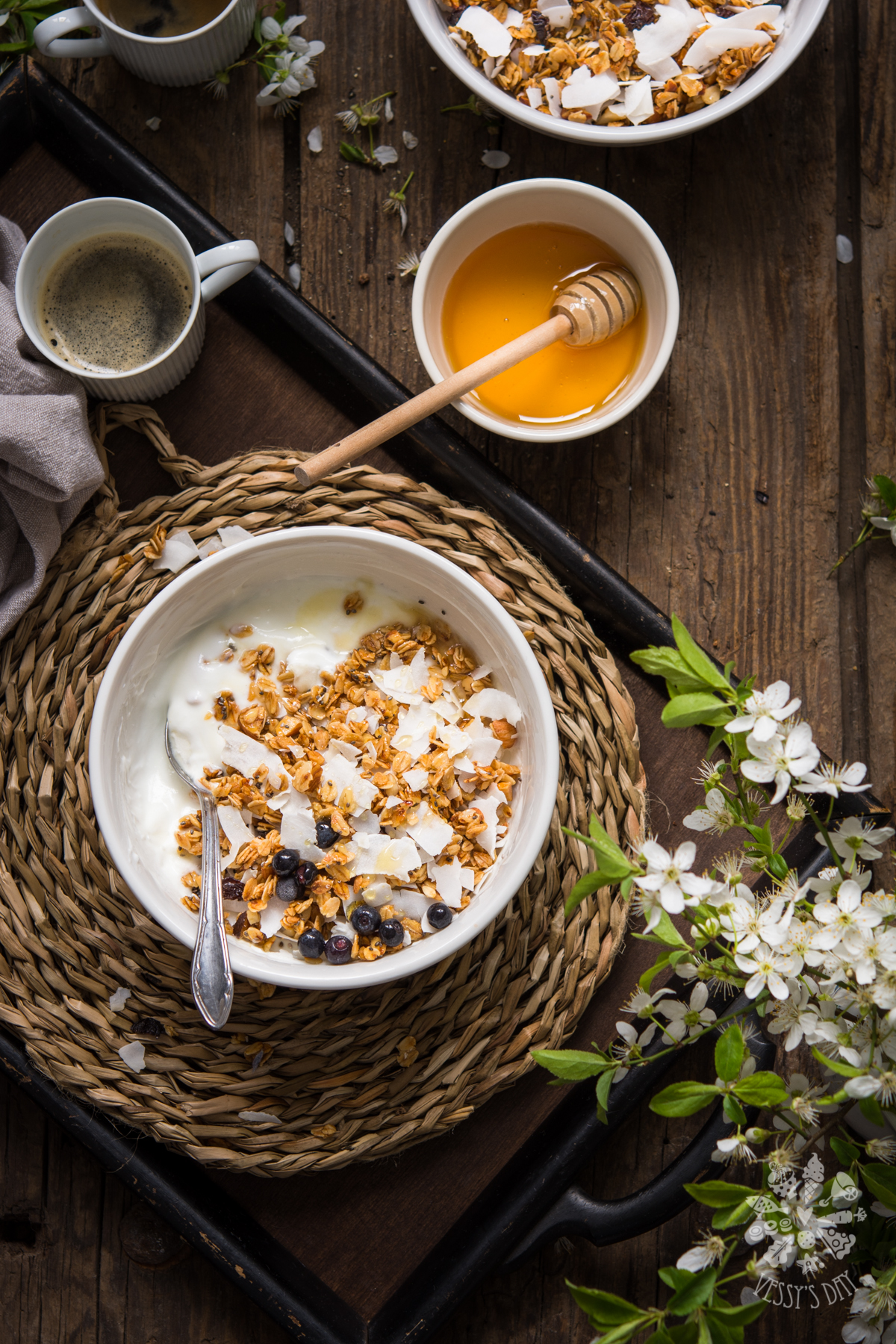 Домашна гранола с боровинки и кокос